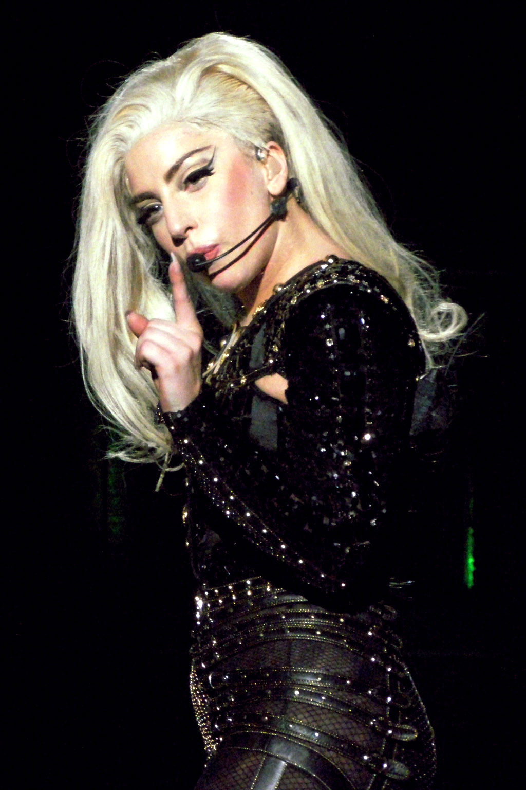 celebrity for hire lady gaga