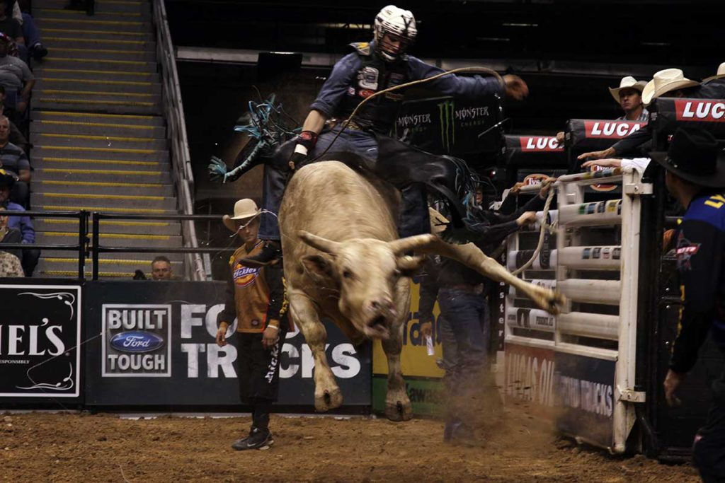 Want To See The 2018 Professional Bull Riding Competition