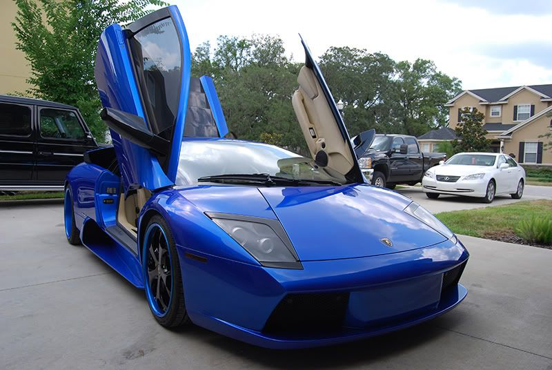 Want To Drive A Lamborghini Murcielago Exotic Car Rentals